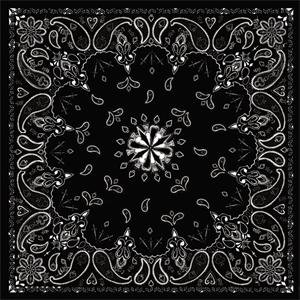 Zan Headgear Bandanna - One size fits most/Black Paisley