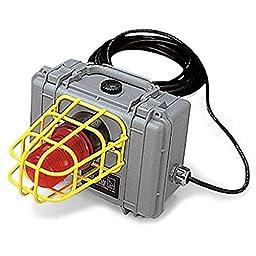 Allegro Industries 9871-01 Remote CO Alarm/Strobe Light System, Standard