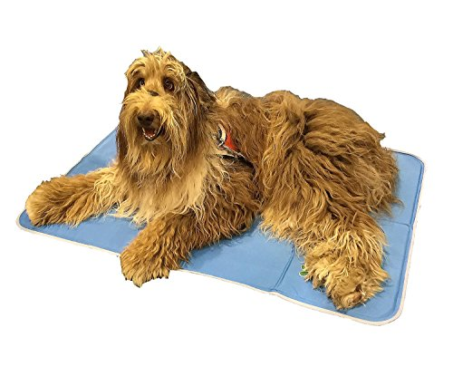The Green Pet Shop Self Cooling Pet Pad, Large,  35.4-inch x 23.6-inch