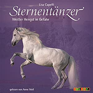 Rettung für Lindenhain (Sternentänzer 5) Hörbuch