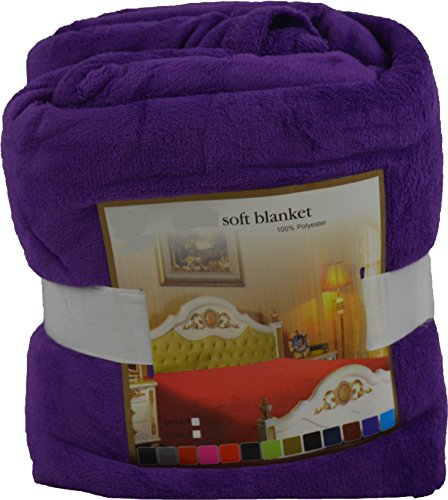 Fancy Collection Luxury Micro-Fleece Ultra Plush Solid Blanket (Queen, Purple) front-399791