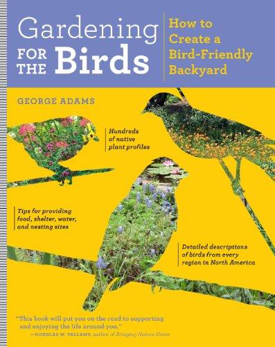 Gardening for the Birds: How to Create a Bird-Friendly Backyard