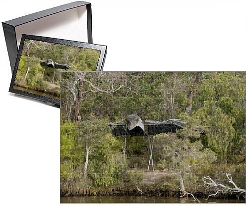 photo-jigsaw-puzzle-of-australia-western-australia-albany-kalgan-river