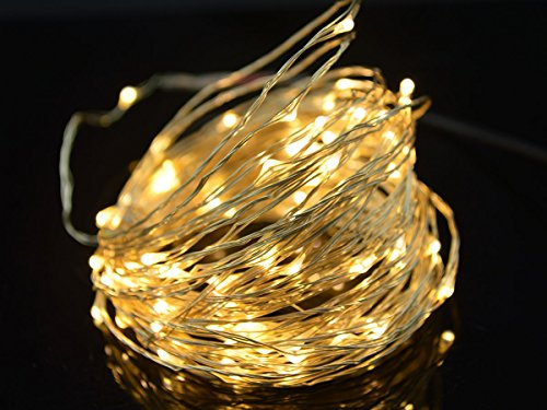 E-Age Starry Dc 12V Silver Coating 10M/33Ft Copper Wire 100 Leds String Lights For Wedding Christmas Party Holiday + Power Adapter (Warm White)