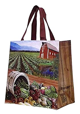 Earthwise Reusable Shopping Tote Bag (4 Pack)