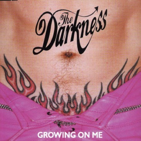 The Darkness - Growing on Me - Zortam Music