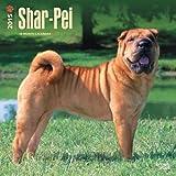 Shar-Pei 2015 Calendar