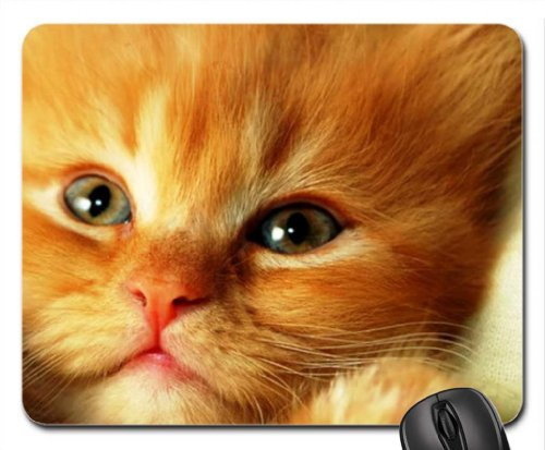 Cat for Carmen (carmenmbonilla) Mouse Pad, Mousepad (Cats Mouse Pad)