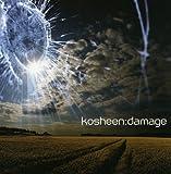 Songtexte von Kosheen - Damage