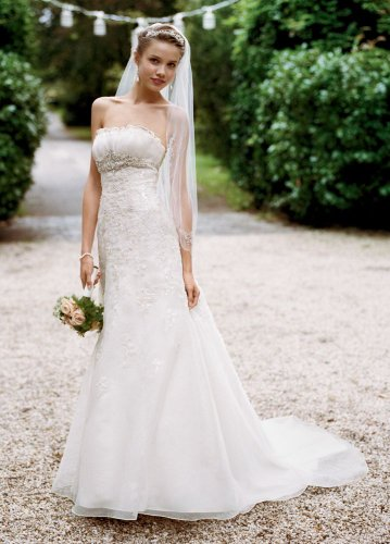 David's Bridal Wedding Dress: Organza Fit and