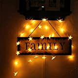 YZG 室内装飾 クリスマスツリー、ワードローブ、テーブル、保育室、ガーデンパーティー、フェンス、パティオ イルミネーション 飾りスター LED星イルミネーションライト 30LEDライト 3M 電池モデル Home Led