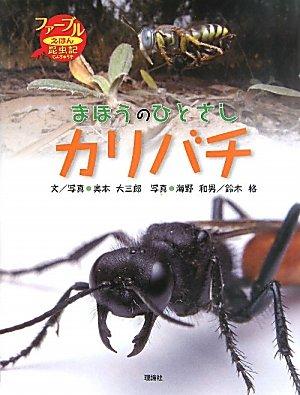 まほうのひとさしカリバチ (ファーブルえほん昆虫記)