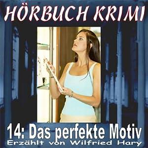 Das perfekte Motiv (Hörbuch Krimi 14) Hörbuch