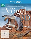 DVD & Blu-ray - Die fantastische Reise der V�gel  (inkl. 2D-Version) [3D Blu-ray]