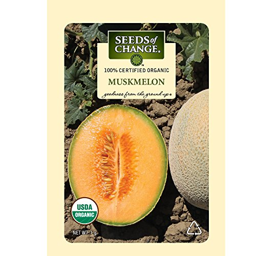 Seeds of Change 05989  Certified Organic Muskmelon