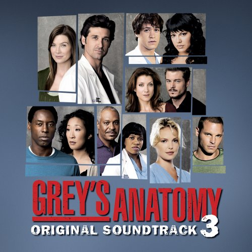 Grey's Anatomy 3ª Temporada – HDTV Dublado Torrent Download (2007)
