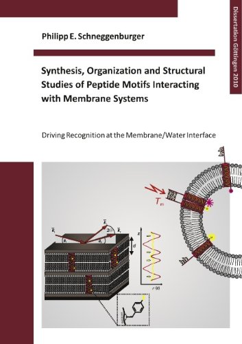 Synthesis, Organization and Structural Studies of Peptide Motifs Interacting with Membrane Systems