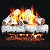 Peterson Real Fyre 24-inch White Birch Log Set With Vented Natural Gas G4 Burner - Match Light