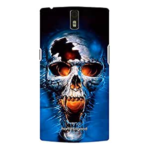 HomeSoGood The Broken Skull Multicolor 3D Mobile Case For OnePlus One (Back Cover)