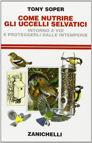 come-nutrire-gli-uccelli-selvatici-intorno-a-voi-e-proteggerli-dalle-intemperie