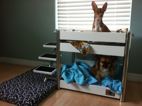 Amazon Com Lazybonezz Metropolitan Pet Bunk Bed Ebony