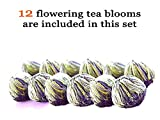 Tea Beyond Iced Flowering Tea Gift Set Clear Glass Teapot Polo 45 Ounce Detox Blooming Tea 12 ct Warmer Iced Hot Whole Leaf White Tea Gifts NON GMO NO Natural Flavors Added Vegan Friendly 100% Natural