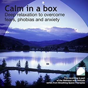 Calm in a Box | [Annie Lawler]