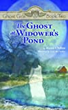 The Ghost at Widower's Pond (Ghost Girls Books)
