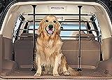 Audi Q5 Gitter Pare Hunde--Gitter Auto