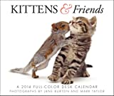 Kittens & Friends 2014 Box Calendar