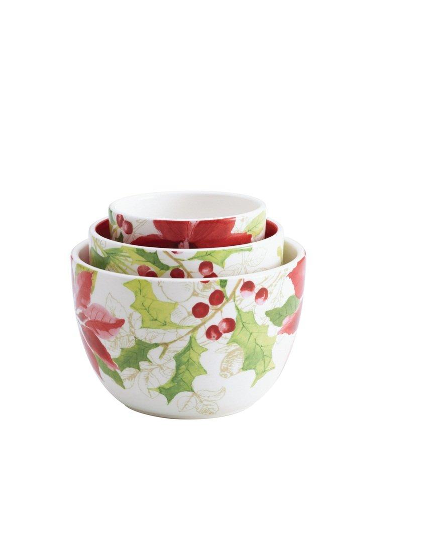 Christmas Wikii  sc 1 st  Christmas Wikii & Poinsettia Dinnerware Bowls | Christmas Wikii