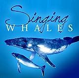 echange, troc Voix des Baleines - Singing Whales / Chants des baleines