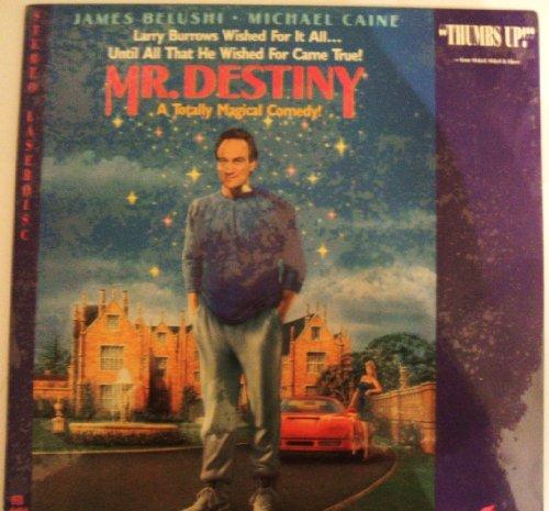 Mr. Destiny: A Totally Magical Comedy