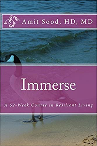 Immerse: A 52-Week Course In Resilient Living: A Commitment To Live With Intentionality, Deeper Presence, Contentment, And Kindness. (Volume 1)