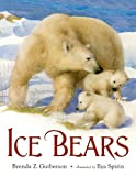 img - for Ice Bears book / textbook / text book