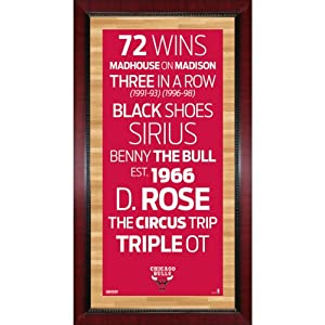 Chicago Bulls Subway Sign Wall Art 16x32 Photo by Steiner+Sports