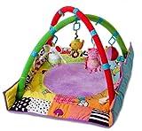 Taf Toys 10985 Palestrina Multi-Attività per neonato