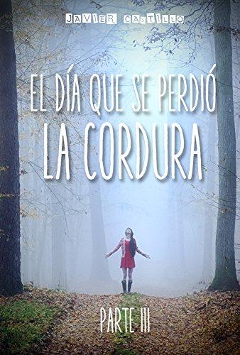 """17 books of Javier Castillo """"El día que se perdió la"""