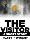The Visitor - A Romantic Tale of the Paranormal
