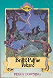 Brill and the Puffire Volcano (Exitorn Adventures)
