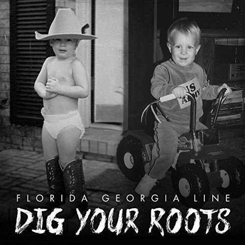 Dig Your Roots [12 inch Analog]