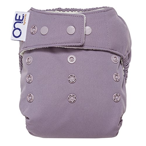 GroVia O.N.E Cloth Baby Diaper - Haze