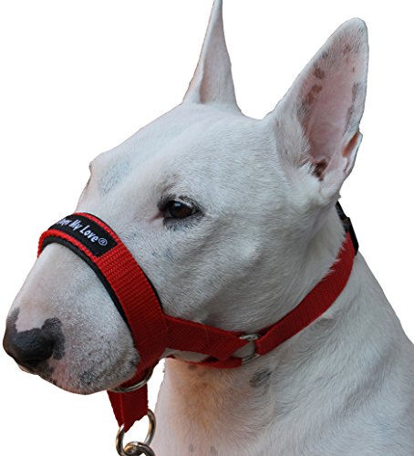 Dog Head Collar Reviews