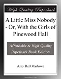 img - for A Little Miss Nobody - Or, With the Girls of Pinewood Hall book / textbook / text book