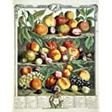 August, The Twelve Months of Fruits (Print On Demand)