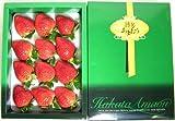 福岡産 「博多あまおう」イチゴ 大粒12個入り化粧箱