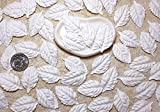 50 Leaves Off White Rose Mulberry Paper Leaf Scrapbook Craft Making Card Wedding