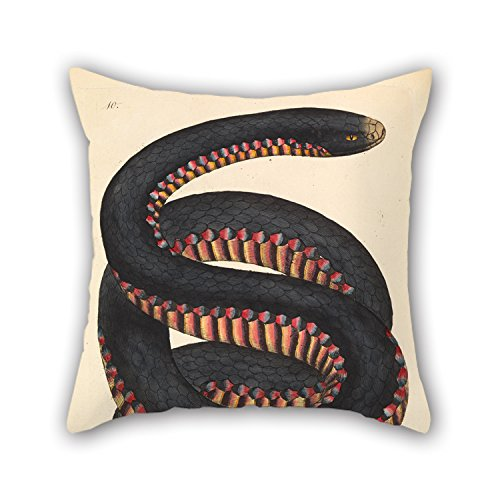 Loveloveu The Oil Painting James Sowerby - Crimson-sided Snake, Coluber Porphyriacus Throw Pillow Covers Of ,20 X 20 Inches /