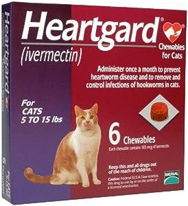 Heartgard Chewables Feline (Purple) - 5-15 lbs - 6 count