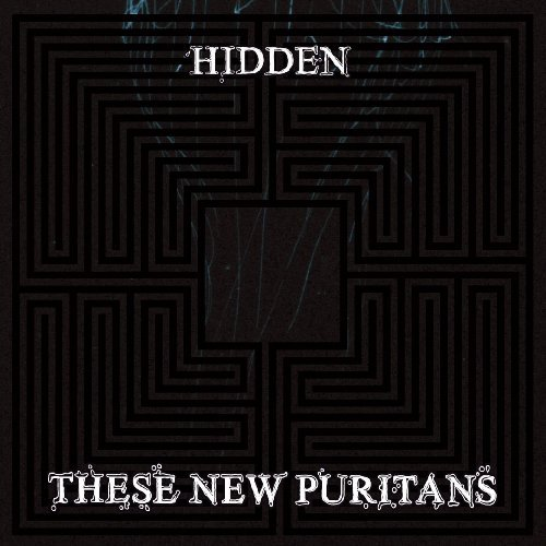 hidden-by-these-new-puritans